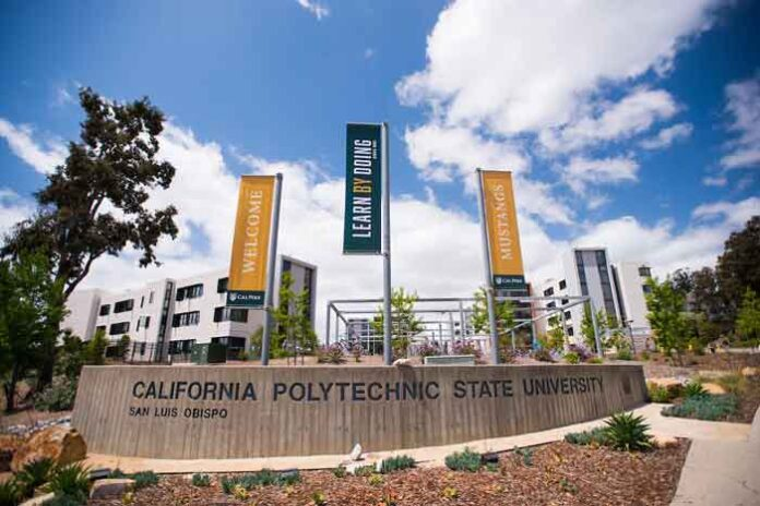My Cal Poly Portal helpful guide