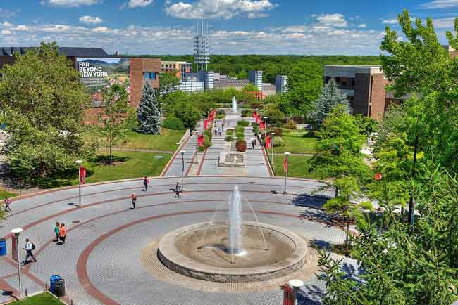 Solar Stony Brook University Portal Login Guide