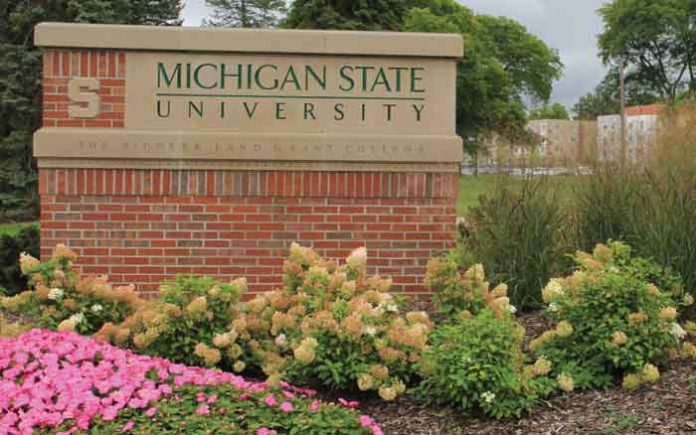 Helpful Guide to MSU StuInfo Student Portal.